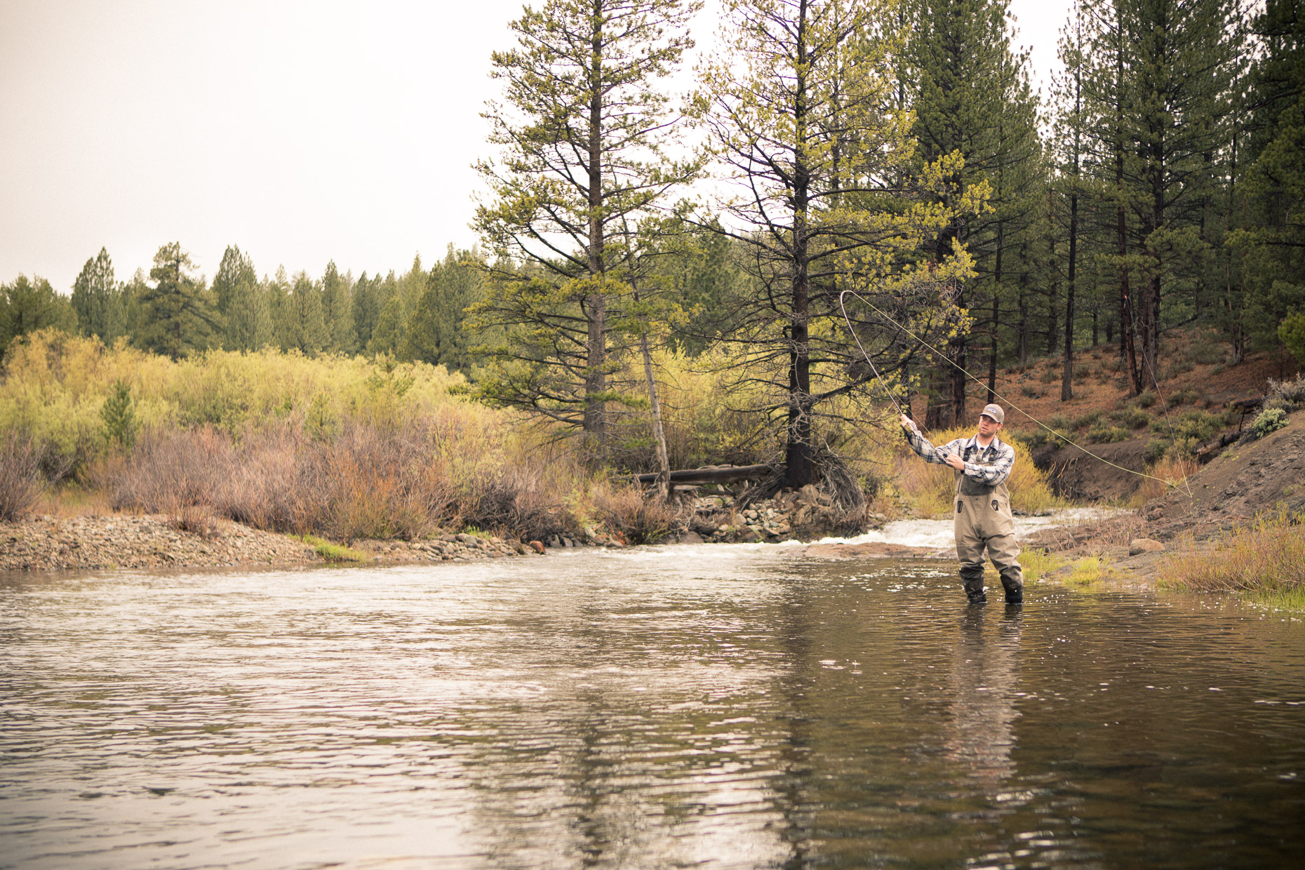 Fly fishing on a stream in the Sierra Nevada