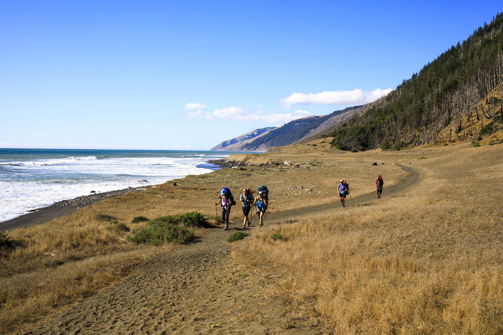 Hiking The Lost Coast Trail in Northern California