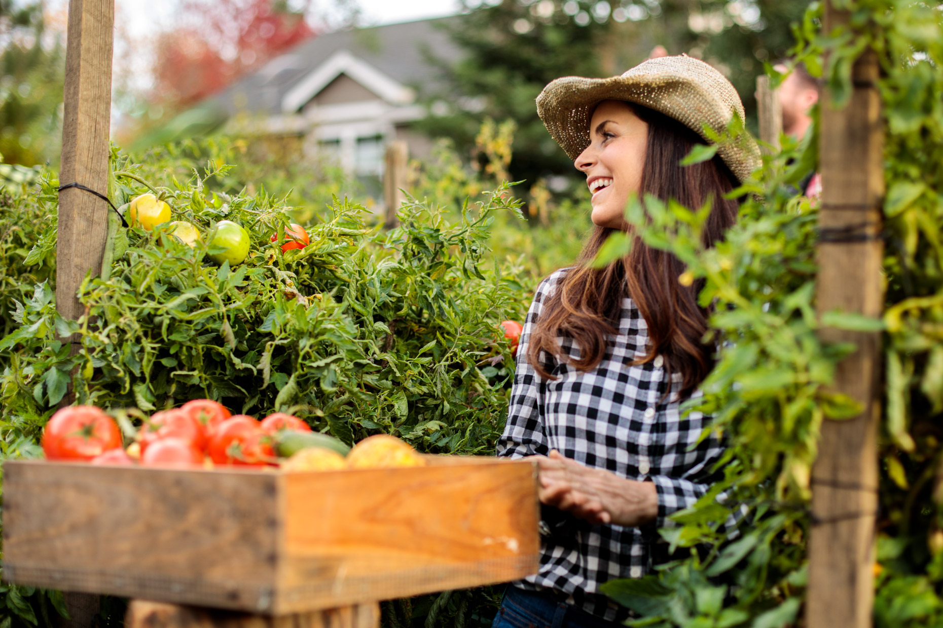 woman picks fresh vegetables from garden