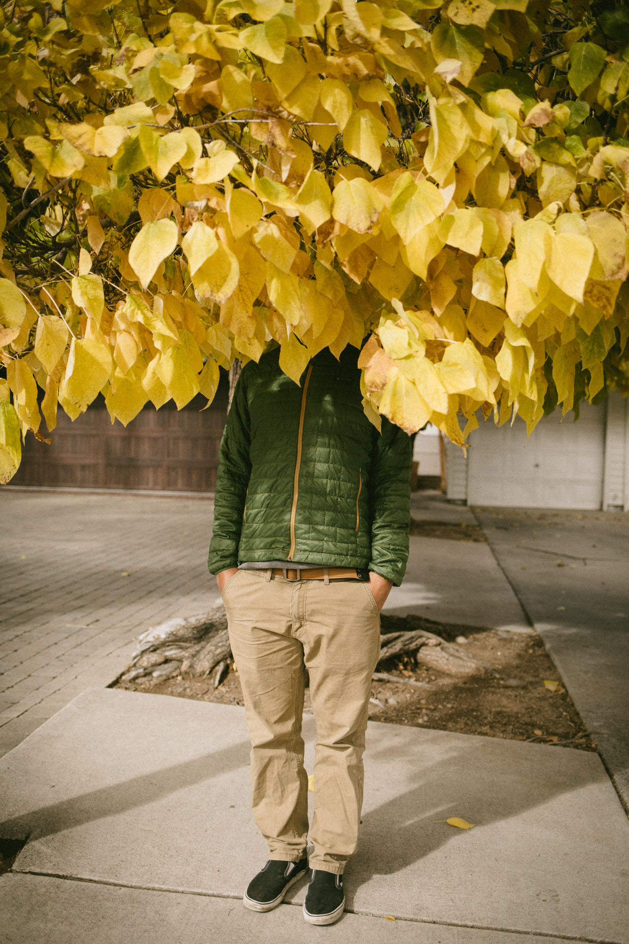 Man stands under fall leaves hiding his head